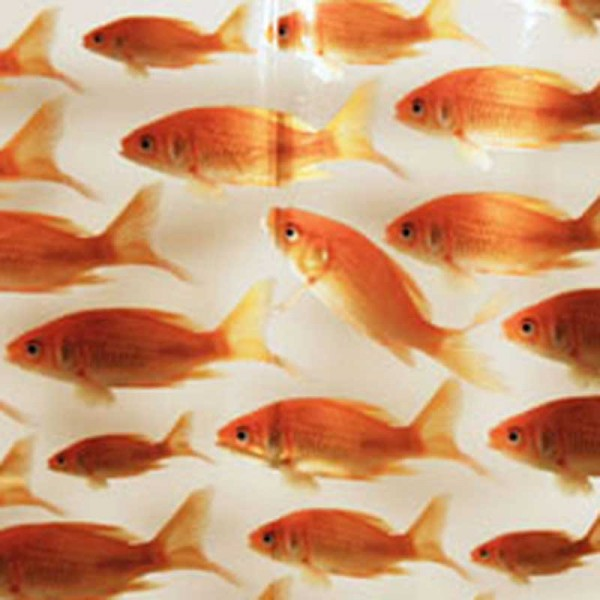 Plastic Shower Curtain 180x200 Goldfish
